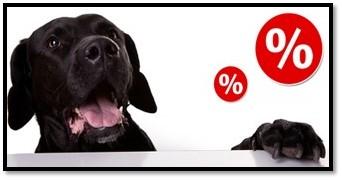 Black Friday pentru câini: hrană și accesorii