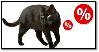 Black Friday pentru pisici: hrană și accesorii