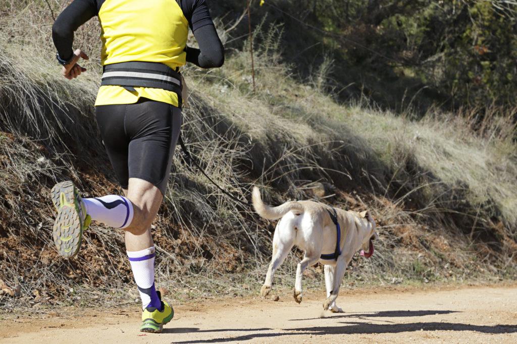 Sport Canin Canicross